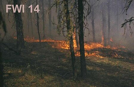 Fire Weather Index 14